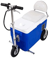 X-Treme X-50-300 Electric Cooler